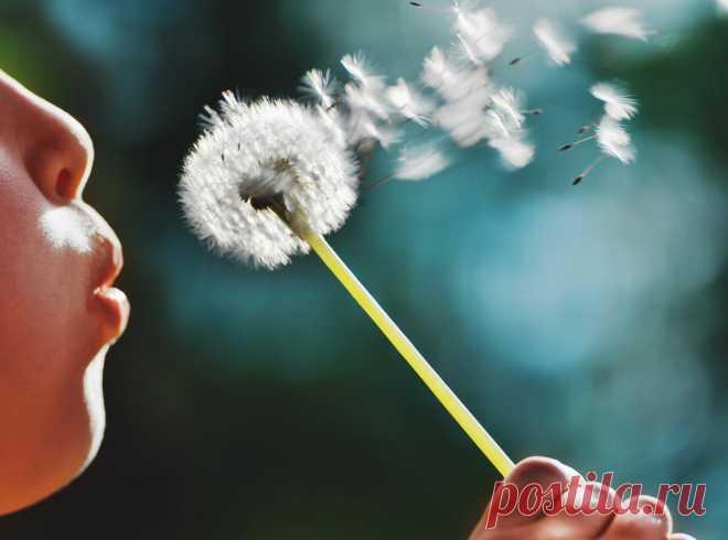 Ваш ребенок не говорит: помогут дыхательные упражнения | Логопед дает совет | Яндекс Дзен