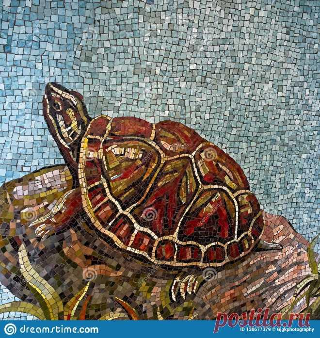Turtle Mosaic Art (Page 1) - Line.17QQ.com