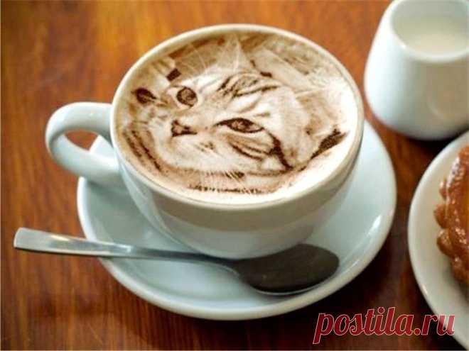 Латте-арт (кофе-арт): что это, как рисовать на кофейной пенке, трафареты для кофе, рисунки на капучино из корицы Что такое латте-арт и на каком кофе можно рисовать. Можно ли сделать рисунок в домашних условиях и что для этого надо. Разновидности и техники рисования.