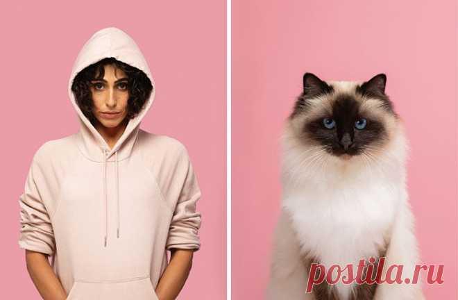 Хозяева и их кошки, которые очень похожи друг на друга / Питомцы