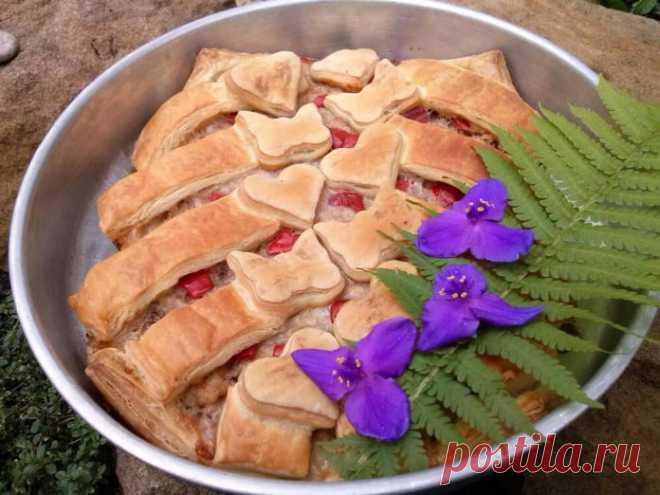 СЛОЁНЫЙ ПИРОГ С МЯСОМ И ОРЕХАМИ Пирог из слоёного теста с мясом и орехами – это сытное и вкусное блюдо.  Ингредиенты: слоёное тесто готовое; индюшиный фарш 1 кг; 1 яйцо; 1 стакан грецких орехов; соль; специи (например, приправа для шашлыка); сладкий перец. Способ приготовления: 1.Выкладываем в форму пласт слоёного теста. 2.В индюшиный фарш добавляем яйцо, грецкие орехи, соль, специи. Всё […] Читай дальше на сайте. Жми подробнее ➡