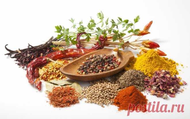 Как приготовить правильно подбираем специи для разных продуктов - рецепт, ингредиенты и фотографии