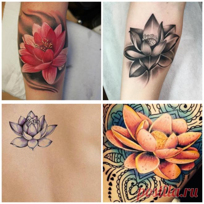Flor De Loto Tatuaje Imagenes U Opciones De Tatuajes Femeninos De - Opciones-de-tatuajes