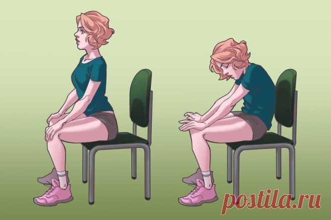 Упражнения на стуле, которые моментально избавят вас от боли в шее, спине и плечах - Образованная Сова