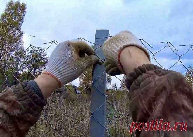 Как за один день сделать бюджетный забор для дачи: инструкция | 6 соток