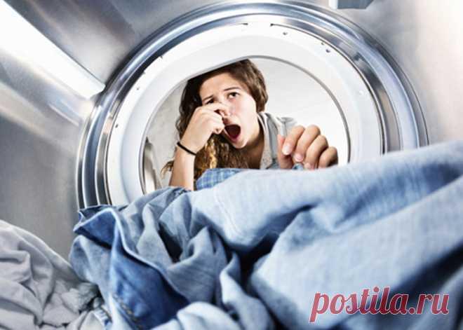 Появился неприятный запах в стиральной машине – как избавиться?