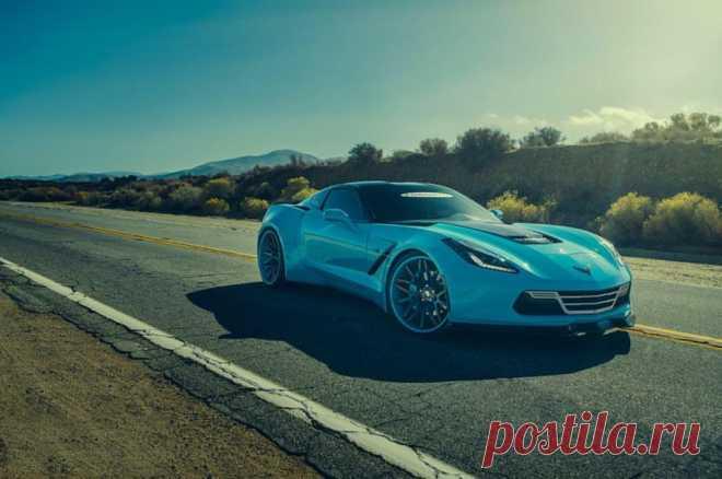 (88) Елена Петрова - Chevrolet Corvette C7