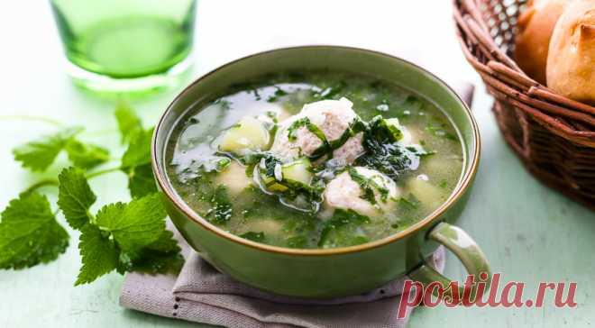 Суп из крапивы с фрикадельками - Образованная Сова