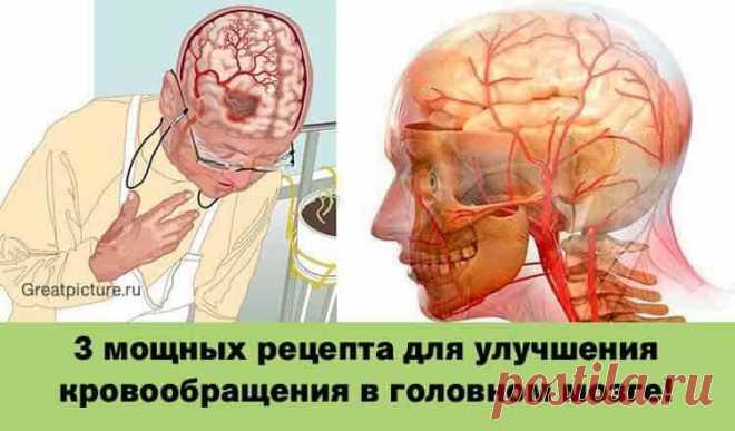 3 мощных рецепта для улучшения кровообращения в головном мозге!