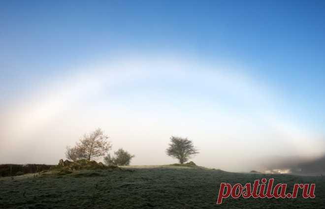 16природных явлений, вреальность которых трудно поверить. Туманная радуга Радуга, которая появляется во время тумана, а не дождя. Туманную радугу можно увидеть и ночью при наличии тумана и достаточно яркой луны.