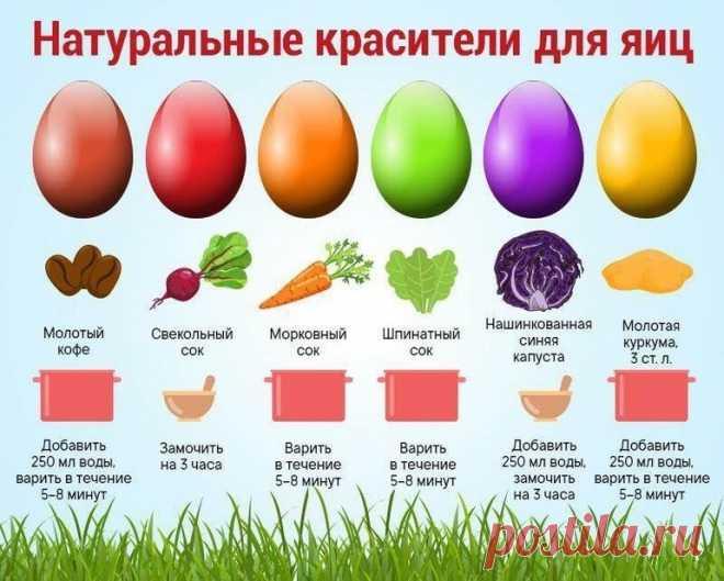 Как покрасить яйца на Пасху - интересные способы! – Коллекция Рецептов в копилочку