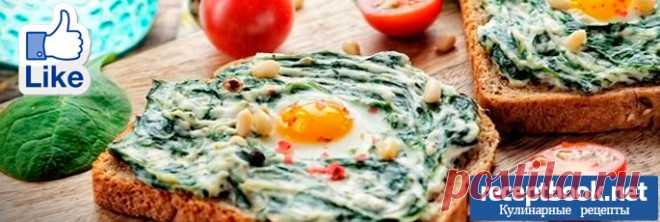 5 кулинарных советов по приготовлению вкусных бутербродов