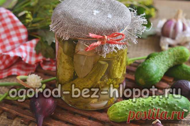 Огурцы по-болгарски на зиму, самый вкусный рецепт