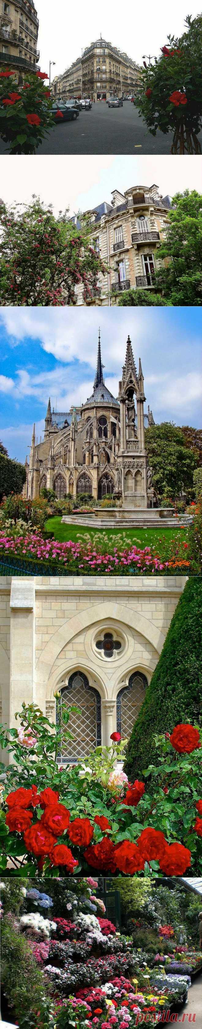 Краски Парижа.