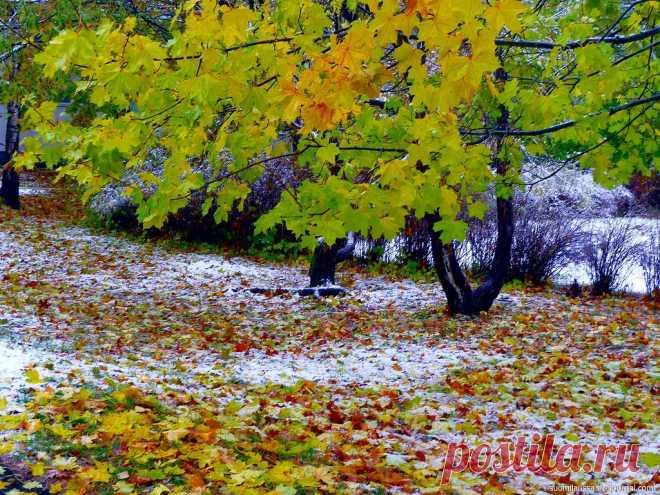 первый снег в начале октября...