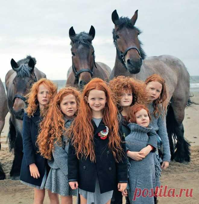 Красота по-ирландски