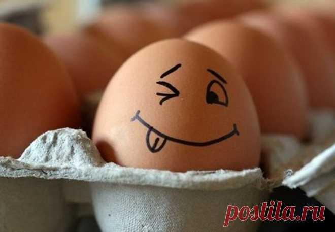 Кто ест на завтрак два яйца - худеет в два раза быстрее | Рекомендательная система Пульс Mail.ru