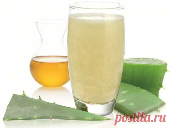Aloe with honey for a stomach: recipe of preparation and Regulation of Admission