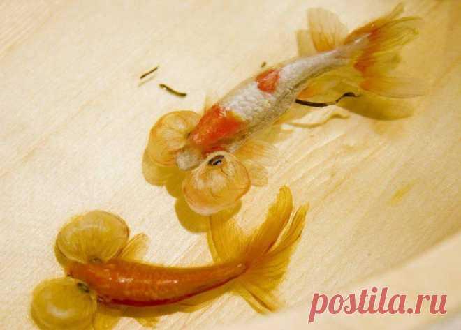 Невероятные трехмерные рыбки японского художника | Журнал Ярмарки Мастеров