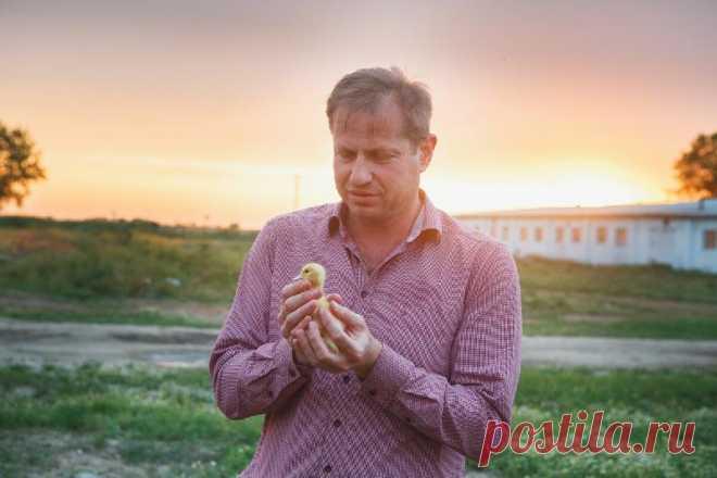 Нет стереотипам. Фермерская продукция и фермерство в России.
