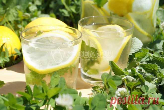 Es muy fácil preparar la limonada de casa con el limón y la menta la limonada Natural de casa con el limón y la menta, sabroso y que refresca.