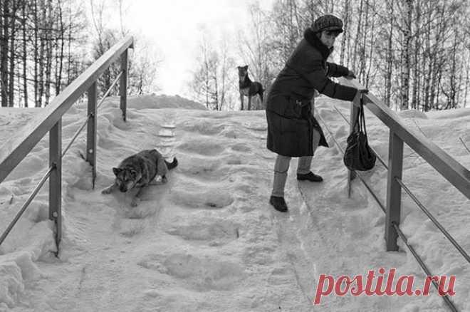 Русский национальный вид зимнего Олимпийского спорта