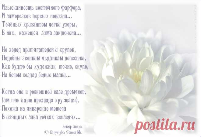 Белые цветы стихи относится