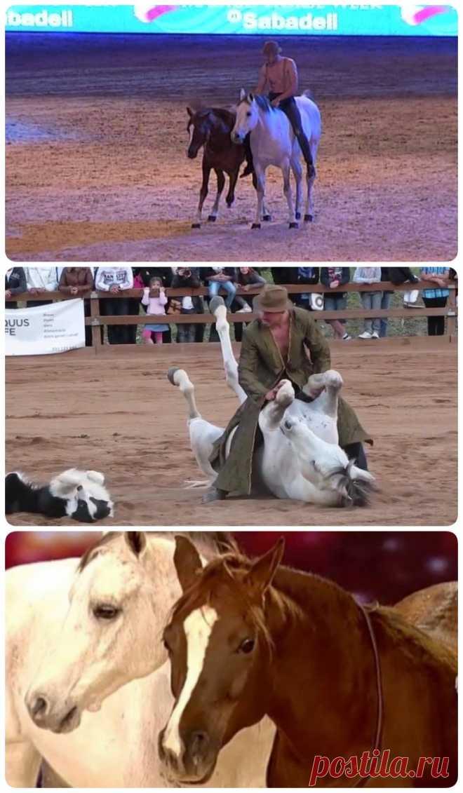 Он наклонился, чтобы поцеловать свою лошадь. Реакция зверя — просто фантастика! - My izumrud