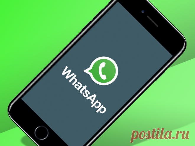 С Нового года WhatsApp станет платным? Кто сможет воспользоваться мессенджером?   Lala Don   Яндекс Дзен