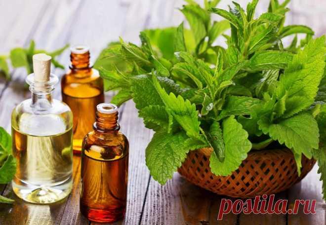 Los óleos etéricos para la densidad y el volumen de los cabello