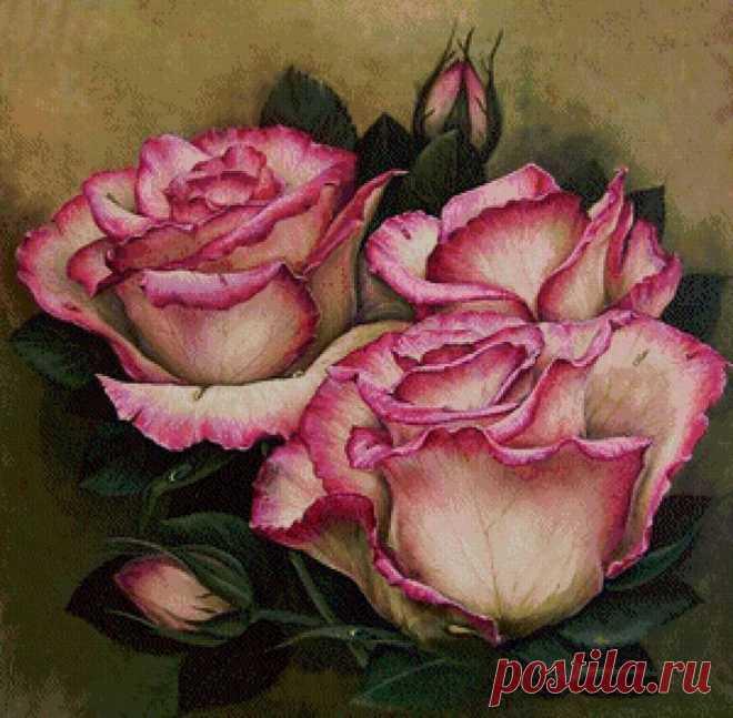 розы - Схемы вышивки - Светлана159 - Авторы - Портал «Вышивка крестом»