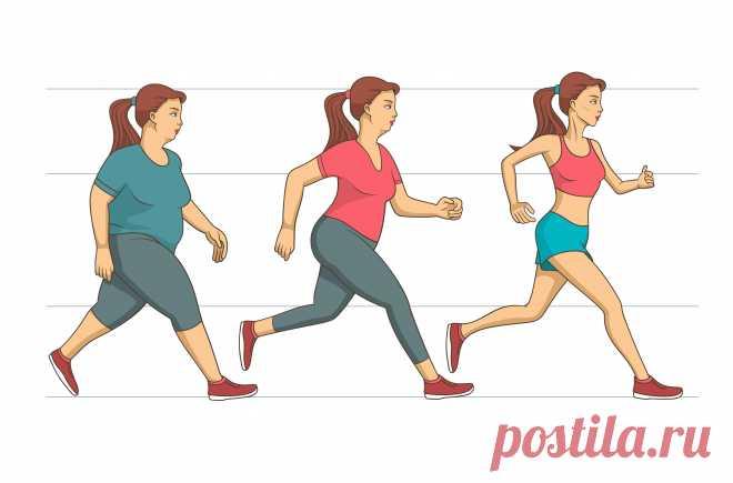 Зачем много ходить и заниматься активными видами спорта? Ходьба для похудения и ходьба для развития интеллекта - читайте на портале slovesa.in.ua