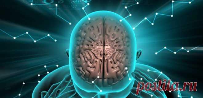 Про мозг человека. 10 сверхспособностей человеческого мозга