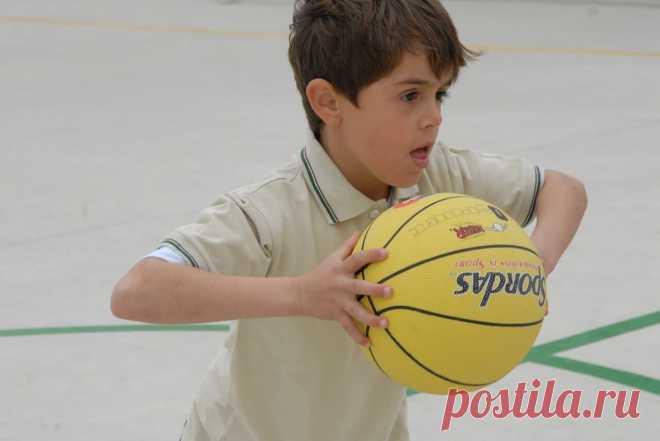 Принципы физического воспитания: Общие, методические, специфические. #дети #воспитание #физкультура  #родителям #мамам