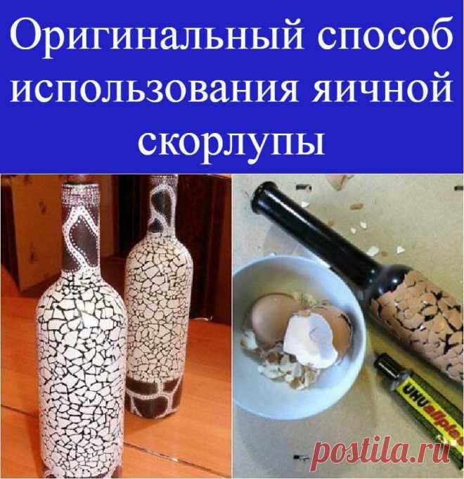 Оригинальный способ использования яичной скорлупы