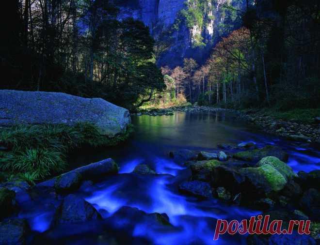 золотой ручей ночью