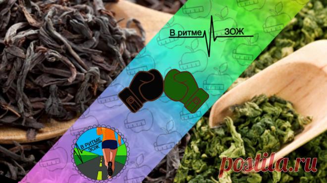 """""""Черный или зеленый"""": битва чаев за звание самый """"полезный"""". Так какой же чай все таки полезнее?"""
