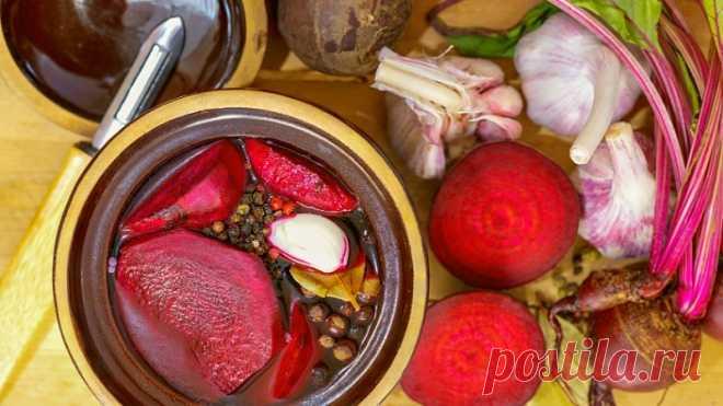 Польза ежедневного употребления ферментированной свеклы