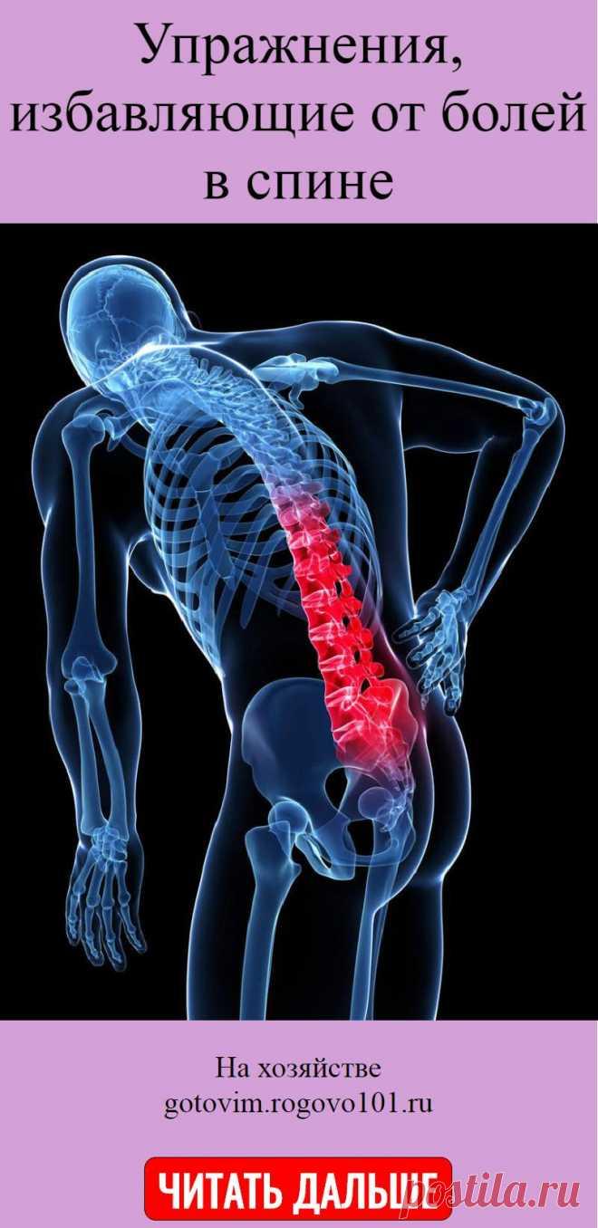 Упражнения, избавляющие от болей в спине