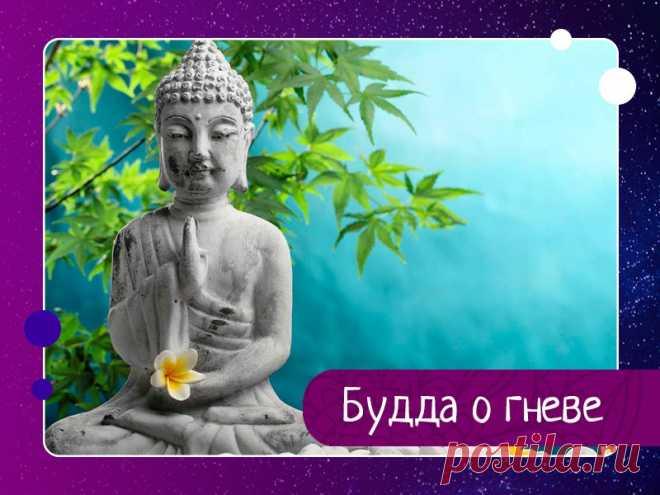 Buddha about anger