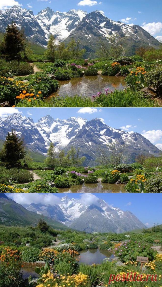 Альпийский ботанический сад в Коль дю Лотаре, Франция