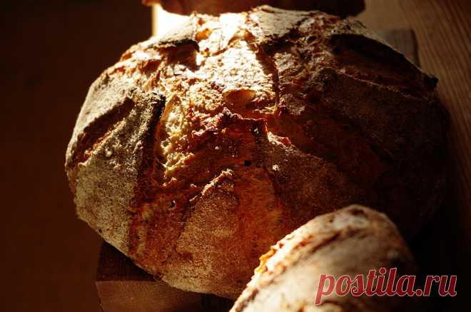 Цельнозерновой хлеб с пажиником и сыром на закваске