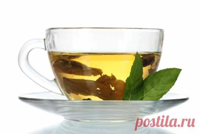 Weight loss on phytotea