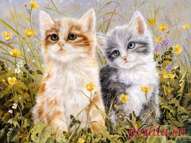 Images ::: альбом Рисунки. Кошки ::: КРЕАТИВ » Рисунки / фентези / фото 16338083 800 x 600 io.ua