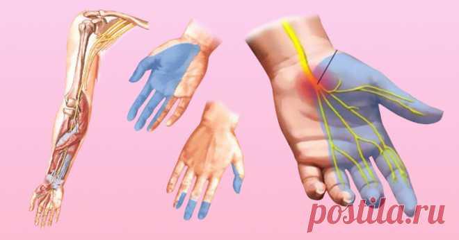 Por qué enmudecen las manos: las 7 causas, que hacen reflexionar en la salud.