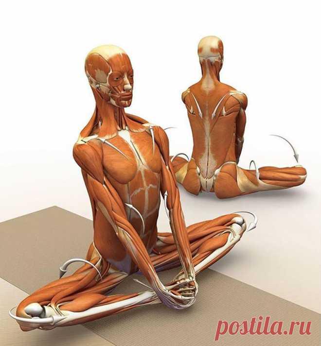6 упражнений, которые снимут напряжение от шеи до пяток! В этой статье вы узнаете как с помощью простых упражнений, массажа и дыхания можно расслабиться и снять напряжение Простые упражнения, представленные в этой статье, расслабляющие движения и размеренное дыхание снимут напряжение от шеи до пяток, избавят от каждодневного...