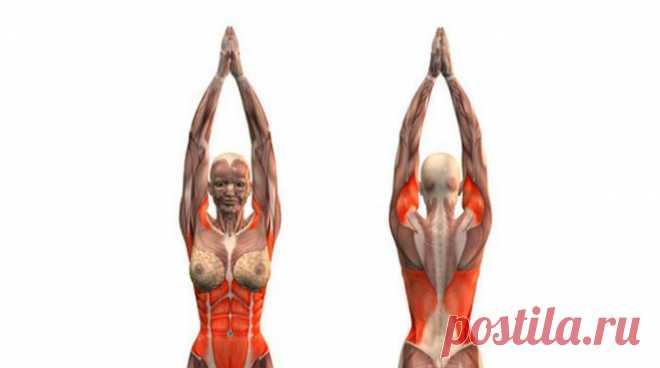 Упражнения для похудения от доктора Бубновского. Без жутких диет и медикаментозного лечения! — ПОЛЕЗНЫЕ СОВЕТЫ И РЕЦЕПТЫ