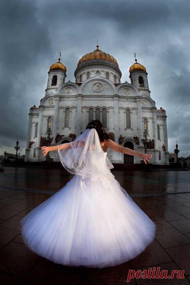 свадьба фотографии молодых - 51 тыс. картинок. Поиск@Mail.Ru