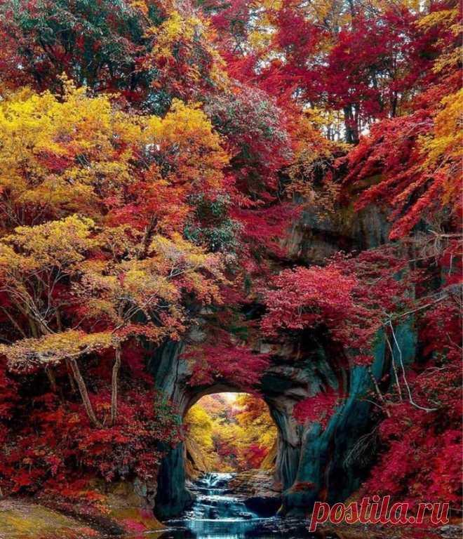 Осень — самый искусный художник на свете | Фотоискусство