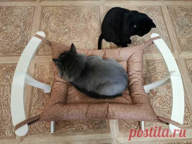 🐾Провести доброе утро на своей любимой лежаночке, что может быть лучше!💥🐈 #mixcat #cat #cats #dog #dogs #pet #pets #russia #модульныедомикидлякошек #модульныедома #беговоеколесодлякошек #кототренажер #лестницадлясобак #прикроватнаялестница #приставнаякроватка #лежанкадлякошки #лежанкадлясобак #родилочка #родильныйдом #родилка #игрушкадлякошек #сургут #янао #хмао #югра #тюмень #киров #тихвин #кириши #ульяновск
